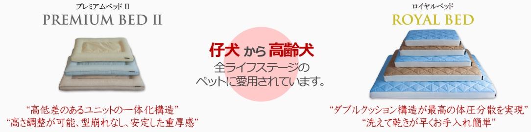 Banner_luxbedseries5.jpg